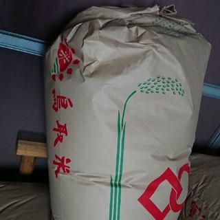 白米10kg、30年鳥取産コシヒカリ(米/穀物)