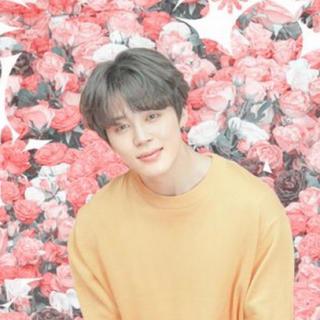 ボウダンショウネンダン(防弾少年団(BTS))のジミン うちわ グッズ(K-POP/アジア)