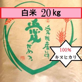 お米 H30 愛媛県産キヌヒカリ 白米 20㎏(米/穀物)