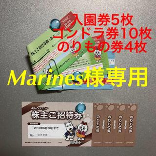よみうりランド、入園・ゴンドラ・のりもの、Marines様専用(遊園地/テーマパーク)