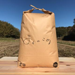 農薬も化学肥料も使わないで育てたお米 玄米10kg(米/穀物)