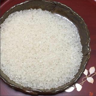 新米☆平成30年度産・特A評価!農家直送さがびより・25キロ(米/穀物)