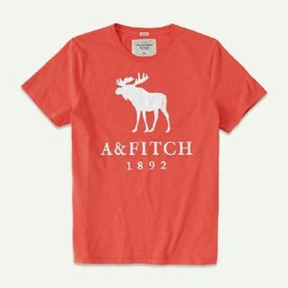 アバクロンビーアンドフィッチ(Abercrombie&Fitch)の新品  Lサイズ   Abercrombie & Fitch メンズシャツ  (Tシャツ(半袖/袖なし))