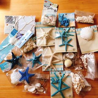 貝殻セット  結婚式  インテリア 飾り 海  (インテリア雑貨)