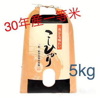 農家直送1等米5kg♪30年産コシヒカリ100%精米済み送料無料(米/穀物)