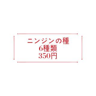 【コメント受付ページ】★送料込★ニンジンの種6種類350円(野菜)