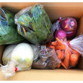 農家野菜詰め合わせ 80サイズ
