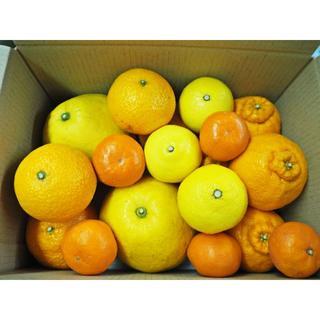 熊本県産 柑橘MIX デコポン・パール柑・スイートスプリング・はるか他 送料込み(フルーツ)