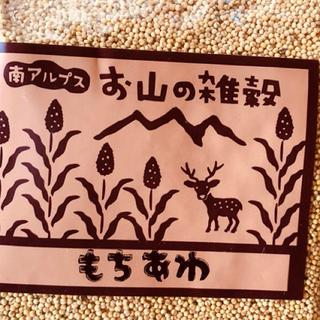 お山の雑穀 もちあわ(米/穀物)