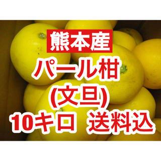 熊本産  パール柑(文旦) 約10キロ  送料込 (フルーツ)