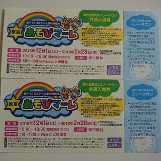 東京 あそびマーレ 室内遊園地&スノータウン 共通入場券(遊園地/テーマパーク)