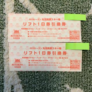 丸沼高原スキー場 リフト1日券 2枚(スキー場)