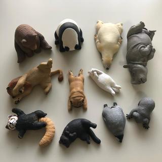 タカラトミー(Takara Tomy)のzoo zoo zoo  シリーズ 3点(キャラクターグッズ)