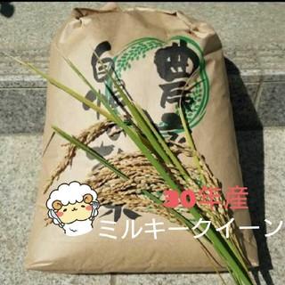 hinahinahinaco様専用です☺ミルキークイーン玄米10kg(米/穀物)