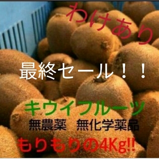 ♡Tarmk♡さん専用 キウイフルーツ8kg(フルーツ)