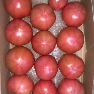 規格外トマト2kg   (野菜)