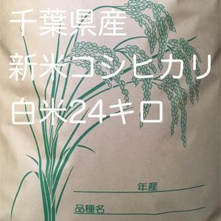 コシヒカリ白米24キロ(米/穀物)