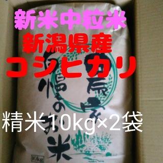 【残り6袋】新潟コシヒカリ中粒米10キロ精米×2袋(米/穀物)