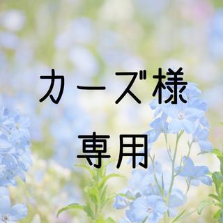 お米 H30 カーズ様専用  愛媛県産キヌヒカリ 玄米 30㎏(米/穀物)