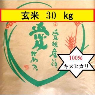 お米 H30 愛媛県産キヌヒカリ 玄米 30㎏(米/穀物)