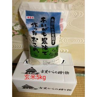 あいがも農法 無農薬 玄米5キロ(米/穀物)