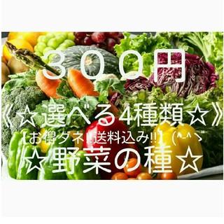 ☆野菜の種☆【お得ダネ!送料込300円】(^ー^)《選べる4種類》!!(野菜)