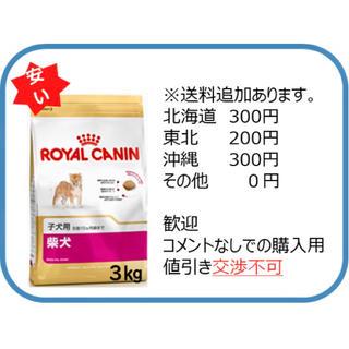 oさま専用 柴犬子犬3kg(ペットフード)