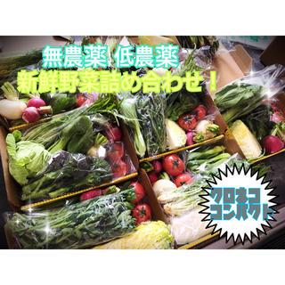 月曜日発送!新鮮野菜 野菜詰め合わせ 無農薬 低農薬