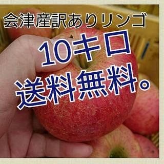 会津産訳あり樹上完熟葉取らずリンゴ。