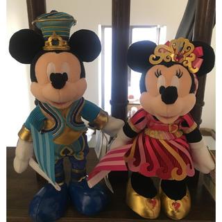 Disney - ポージープラッシー 35周年 ミッキー&ミニー