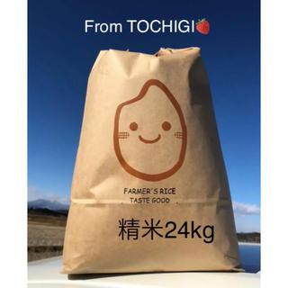 おすすめ♡農家自慢のお米♡精米24kg(米/穀物)