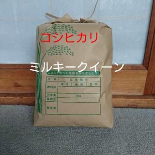 農家直送  白米5㎏(米/穀物)