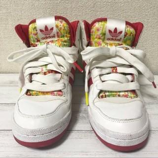 アディダス(adidas)のadidas/ハイカット/スニーカー/美品/24cm/靴/シューズ/アディダス(スニーカー)