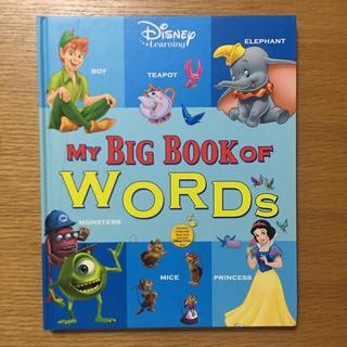 2017年購入DWEディズニー英語 MY BIG BOOK OF WORDS