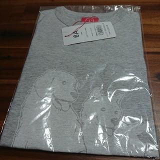 OJICO 6A  Tシャツ グレー(Tシャツ/カットソー)
