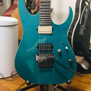 アイバニーズ(Ibanez)のIbanez rg8520 j custom (エレキギター)