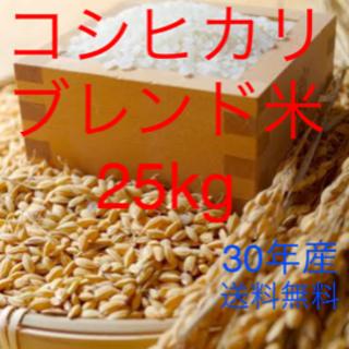 コシヒカリ ブレンド米 25kg 地域別送料無料