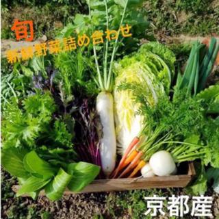 新鮮野菜詰め合わせ!京都 無農薬 減農薬野菜 今が旬なお野菜をお届け!(野菜)