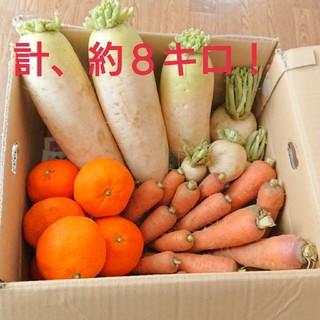 野菜詰め合わせ 大根 かぶ 人参 みかん(野菜)