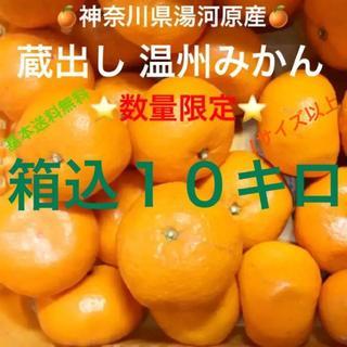 神奈川県湯河原産 産直 晩生 蔵出し 青島温州みかん Lサイズ以上10kg箱込⑥
