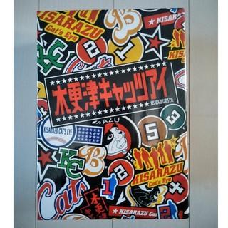 【お値下げしました】DVD-BOX 木更津キャッツアイ(日本映画)