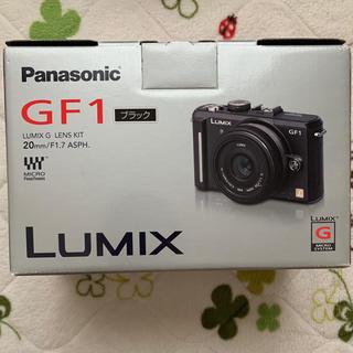 Panasonic - Panasonic ミラーレス一眼カメラ