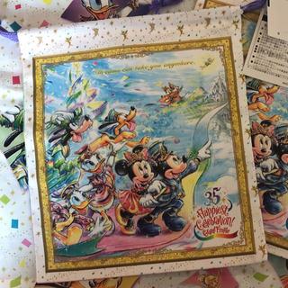 Disney - ディズニー 35周年 グランド フィナーレ 巾着 ミッキー