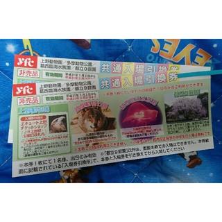 【なでしこ様専用】上野動物園他入場引換券   2枚セット(動物園)