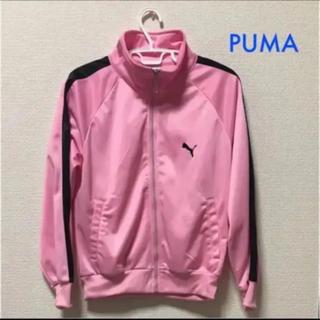 プーマ(PUMA)のPUMA  ピンク  パーカー(パーカー)