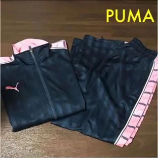 プーマ(PUMA)のPUMA  ジャージ  セットアップ  ピンク(ジャージ)