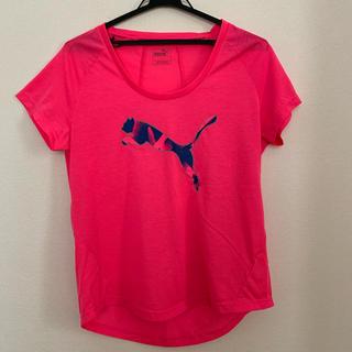 プーマ(PUMA)のPUMA スポーツTシャツ(Tシャツ(半袖/袖なし))