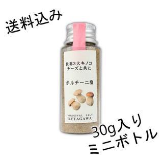 【送料込み】ポルチーニ塩【持ち運び便利なミニボトル】(調味料)