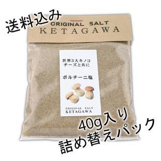 【送料込み】ポルチーニ塩【詰め替え用パウチパック】(調味料)