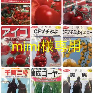 家庭菜園向け 春夏用 四種種子 バラエティセット(野菜)